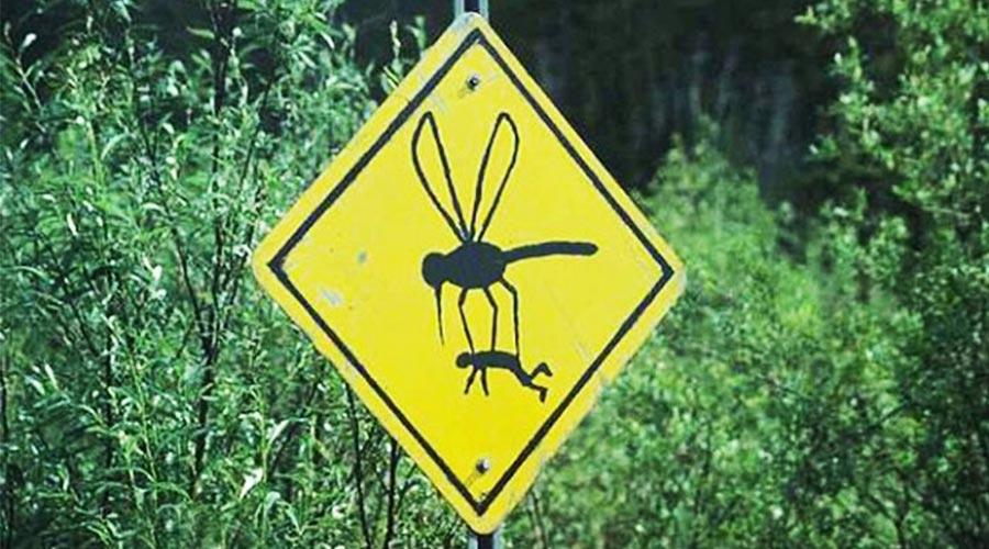 Летен съвет за красота – Комари...! MMTV Online...