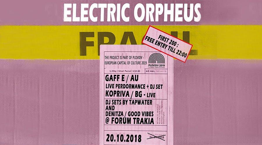 Артисти от Бризбейн, Русе и Пловдив на Electric Orpheus | MMTV