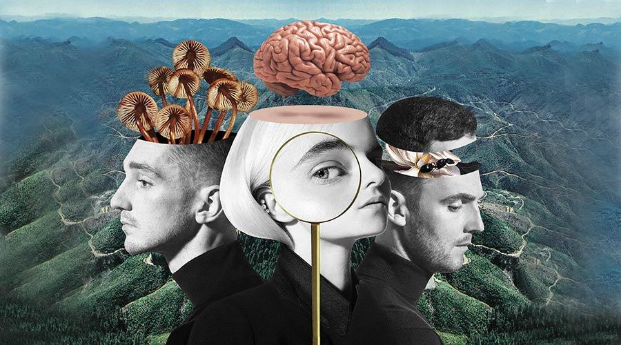 """Clean Bandit обявиха издаването на новия си албум """"What Is Love?"""""""