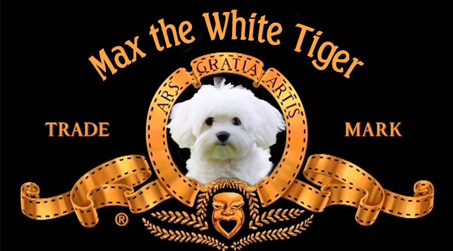 Белият тигър на семейство Ойлен-Шмойлен | MMTV