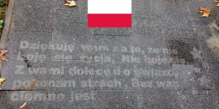 """Европа в капки поезия"" представя Полша | Doda – Dzekuje"