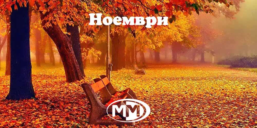 Ноември | Най-пусканите песни в ефира на телевизия ММ