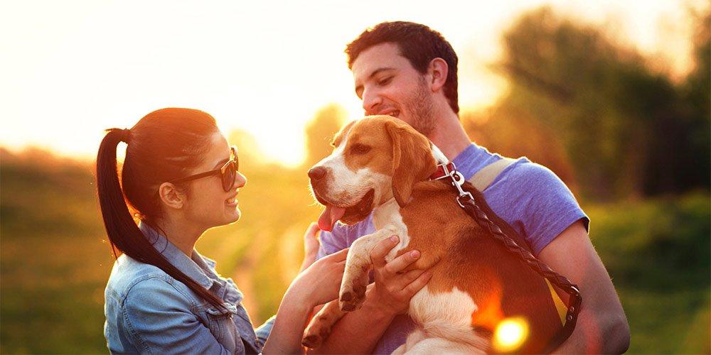А вие какво предпочитате – куче или гадже | MMTV